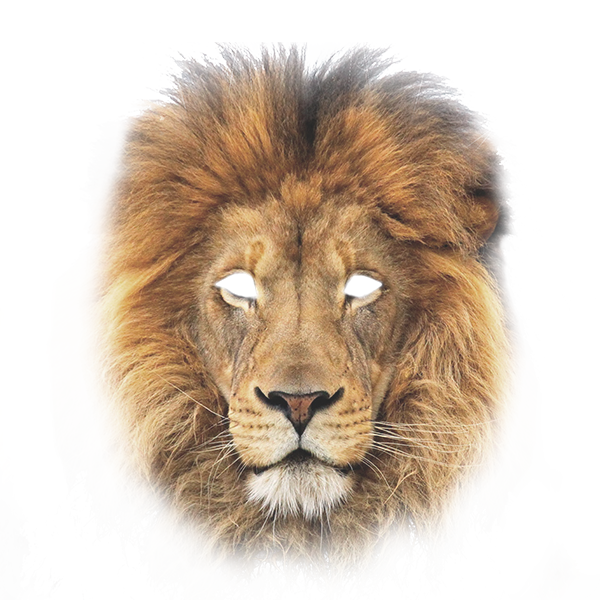 Mask of a lion
